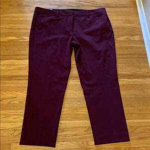 Worthington NWT Ankle Length Dress Pants - Sz 14P